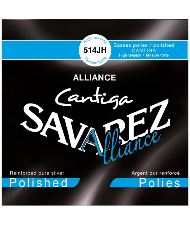 Classic single string D-4th Cantiga polished silvered wound normal tension